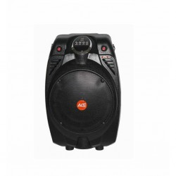 Ace Audio Paz-65 30W Taşınabilir Şarjlı Telsiz Mikrofonlu Amfi - Thumbnail