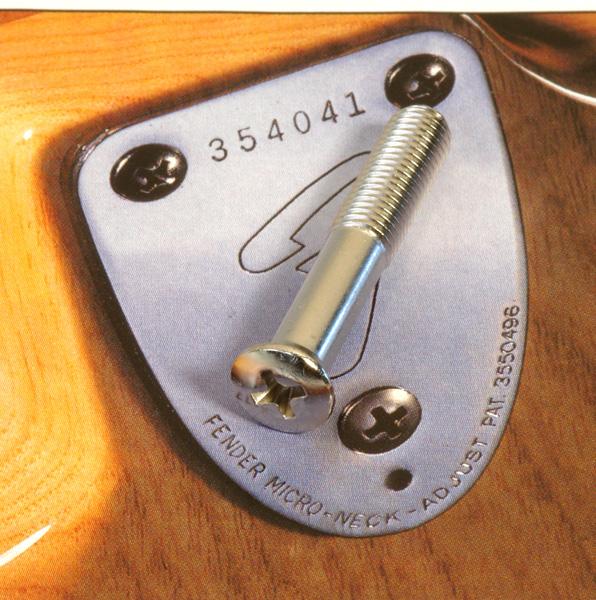 Fender Sap Plakası Vidası