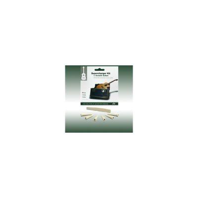 Graphtech PX-9280-00 Akustik Gitar Köprü Pin Seti